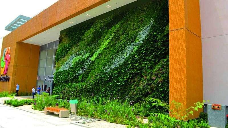 Jardines verticales y terrazas verdes una tendencia que crece - Muros verdes verticales ...