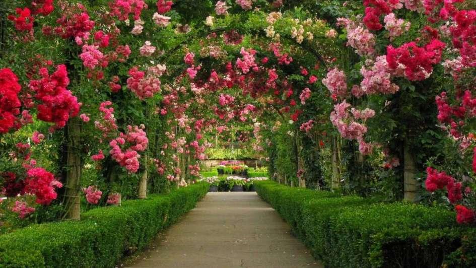 Recorr los jardines m s espectaculares del mundo for Jardines bellos fotos