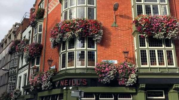 Dublin, devoción cervecera
