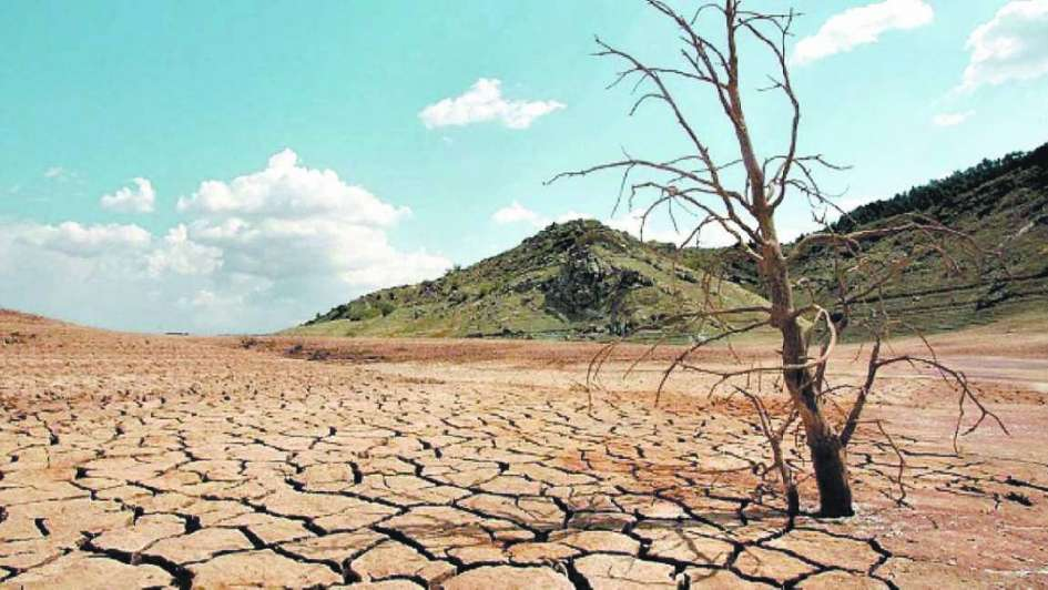 El 37 5 de los suelos est afectado por erosi n for Suelos para jardines fotos