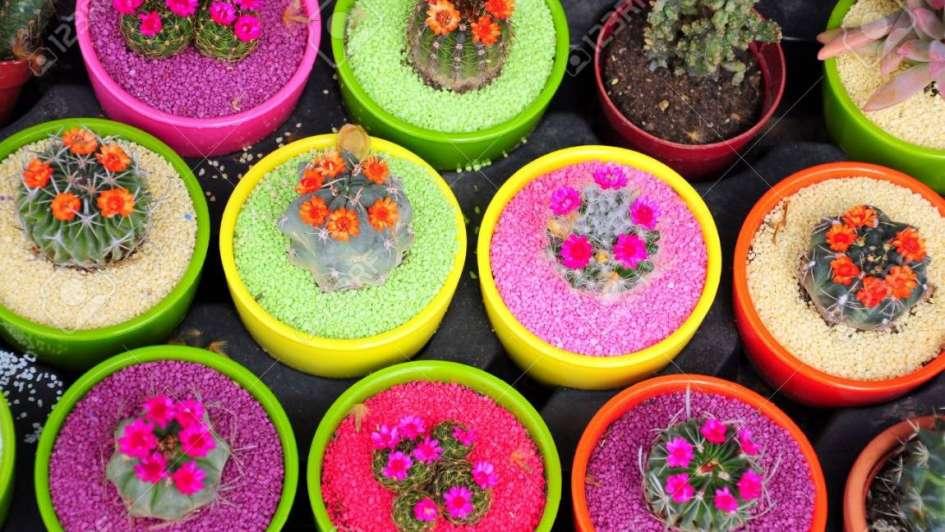 Macetas de colores para decorar tu jard n for Macetas para exteriores decoracion