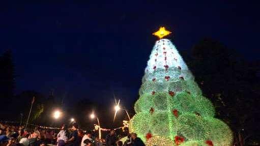 Fiesta Nacional de la Navidad con árbol reciclado en San Martín de ...