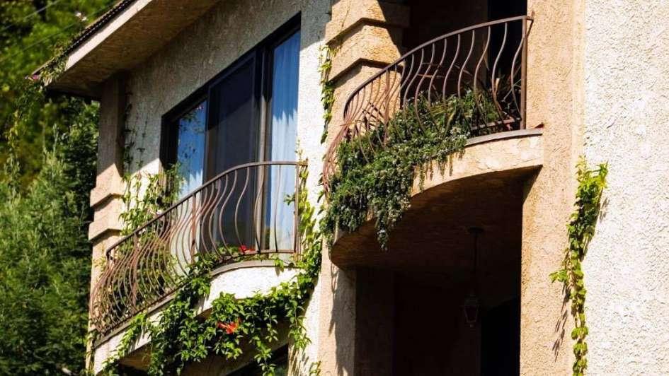 La hiedra, una aliada de tus balcones y terrazas