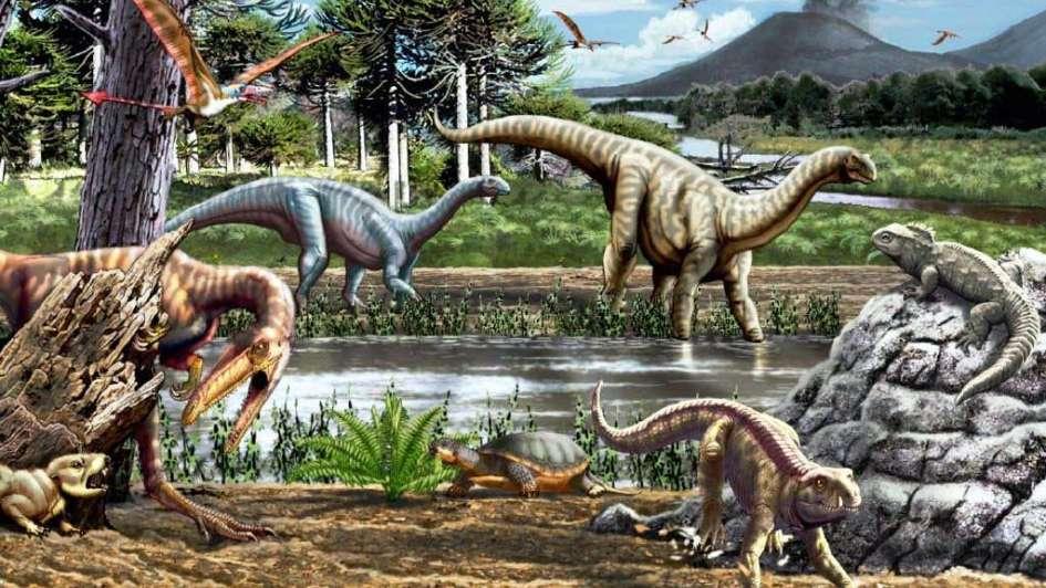 Dinosaurio de   San Juan, único en Sudamérica