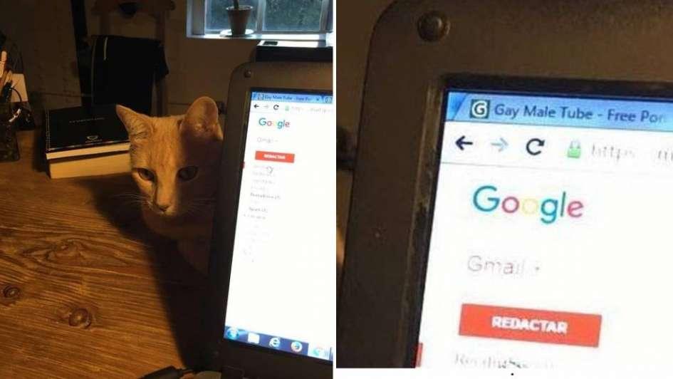 Novaresio publicó una foto de su gato y estalló en las redes