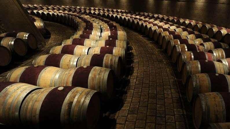Presentaron el Catena Institute of Wine
