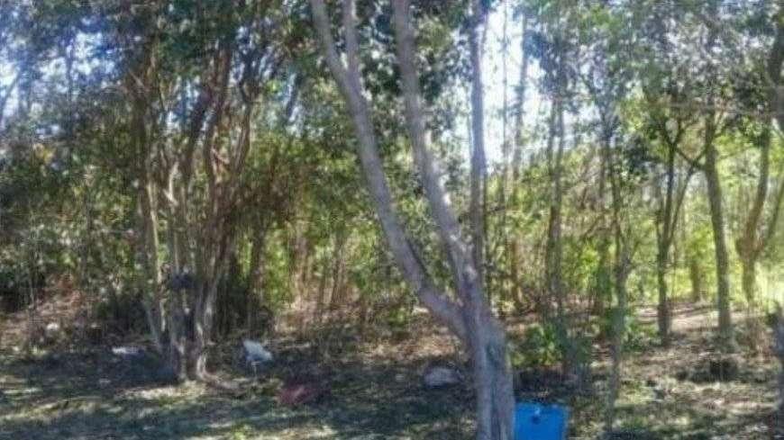 San Pedro: violaron en grupo a una chica durante su fiesta de 15