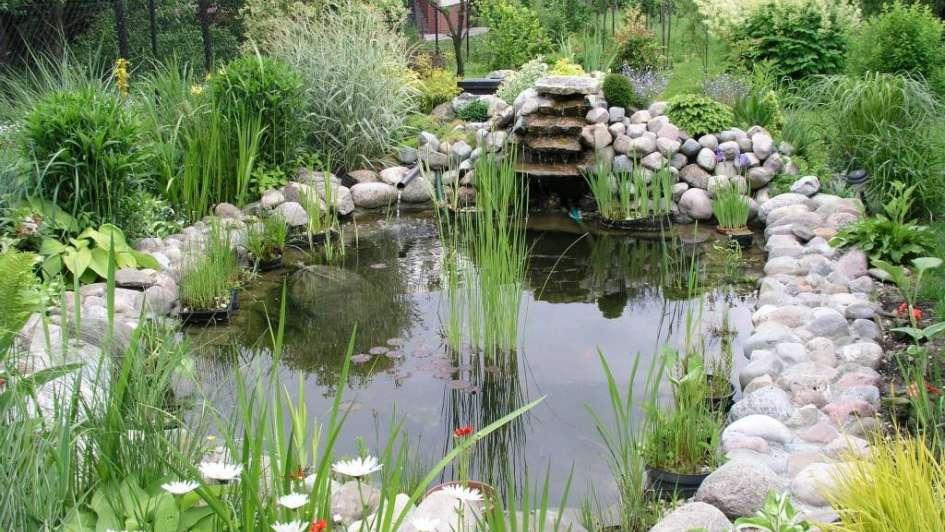 Decora Tu Jardin Con Un Hermoso Estanque - Jardin-con-estanque