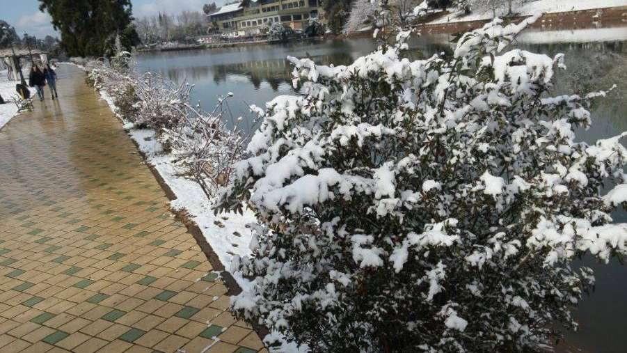 Fotos y video: el Parque San Martín lució increíble por la nevada