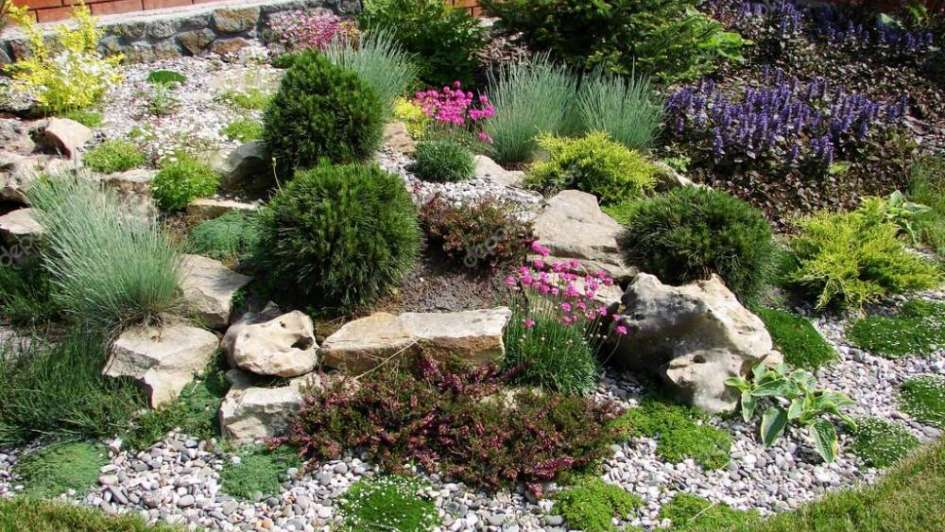 Tener un jardín de rocas