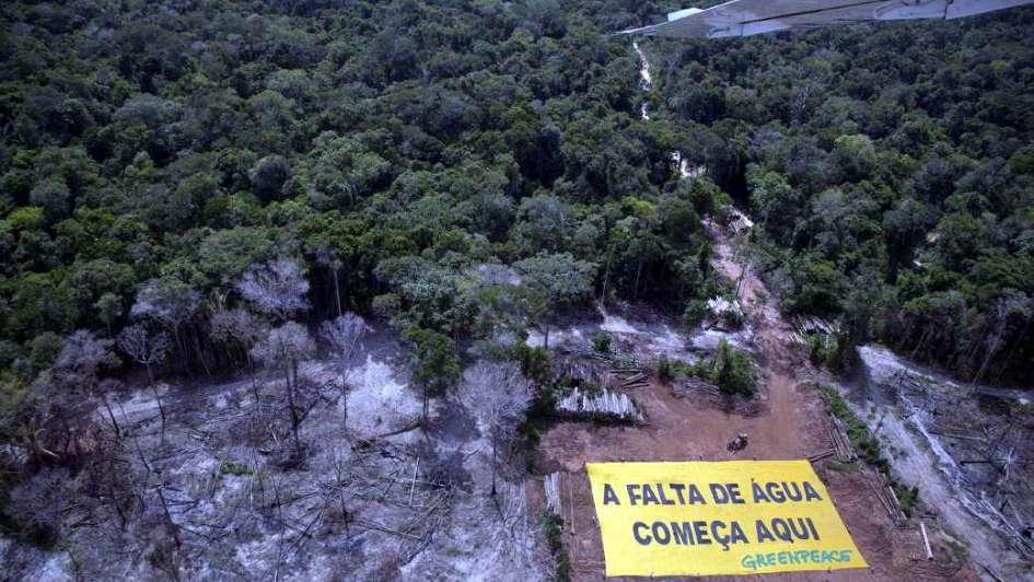 Antes contenida, retorna la deforestación en la Amazonia