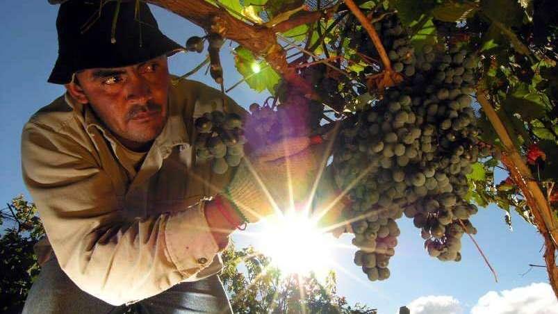 El pueblo de Chilecito celebra al Agua y la Producción