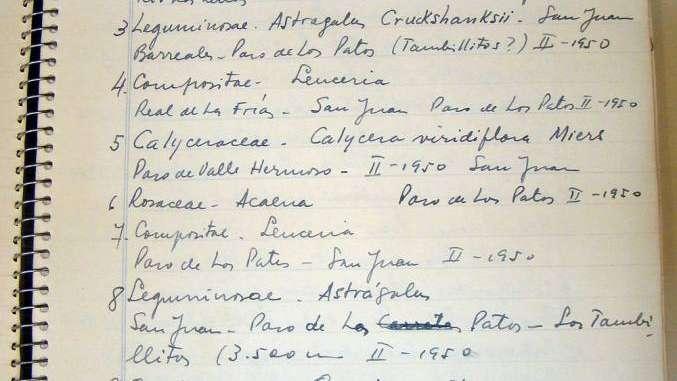 Botánica, Arte e Historia: el paso de Los Patos bajo la mirada de los Roig