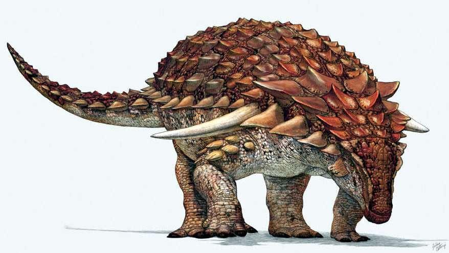 Prehistoria: la coraza con picos de  los dinosaurios pudo haber sido un símbolo de status