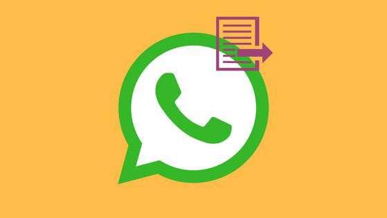 La función de WhatsApp que no sabías que existía y que puede ser muy útil