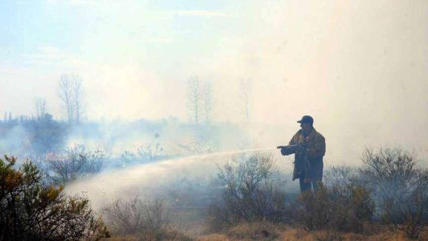 San Rafael: ocho incendios causados por personas