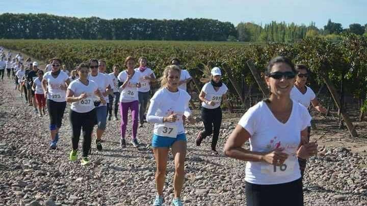 Una maratón entre viñedos