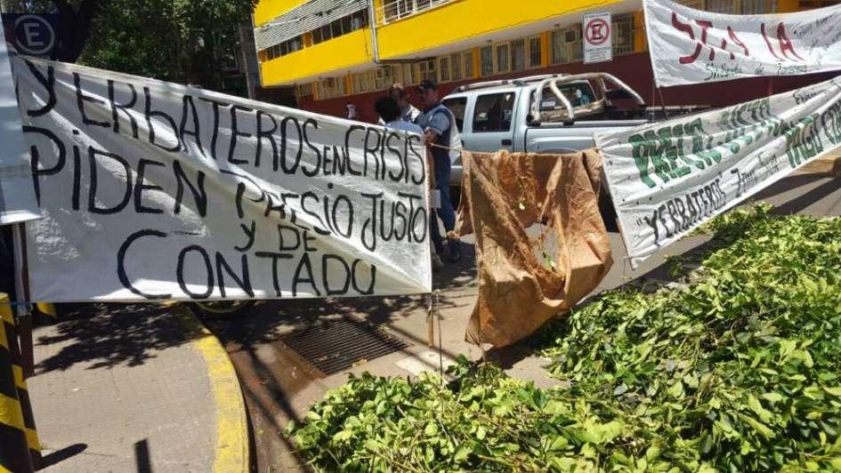 Productores regalarán paquetes de yerba en protesta por bajo precio de materia prima
