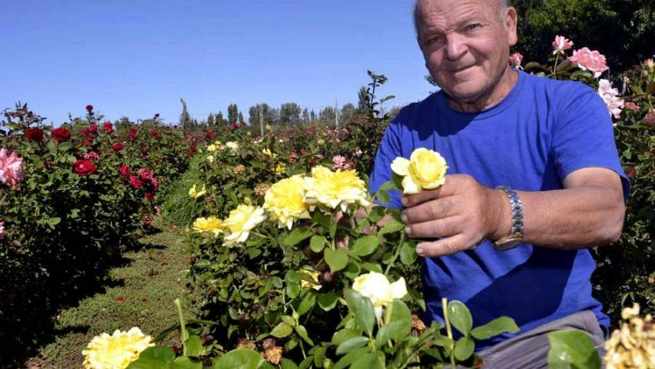 Armando Funes: el hombre que huele a rosas