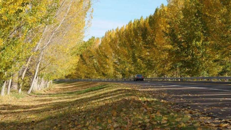 El equinoccio se adelantó y este año el otoño empezó hoy a la mañana