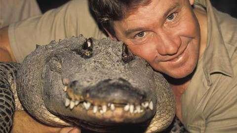 Video: ¿De qué murió exactamente el excéntrico cazador de cocodrilos Steve Irwin?