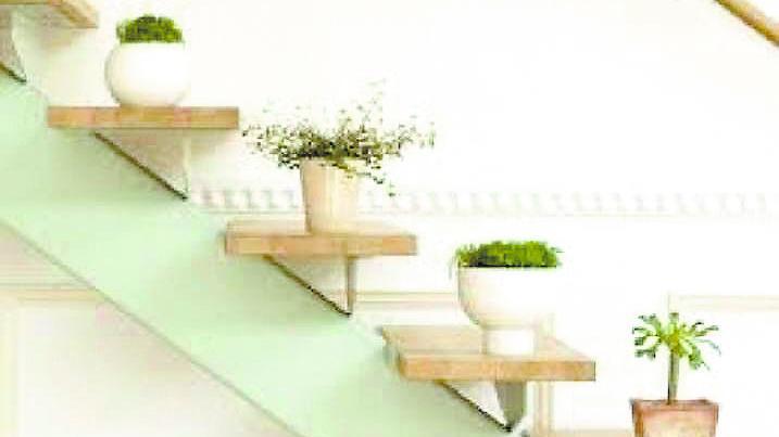Rincones verdes: luz en tu interior