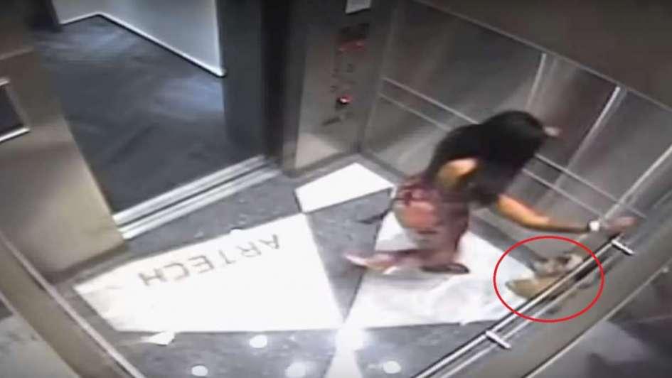 Pateó violentamente a su cachorro en un ascensor y la llevaron detenida