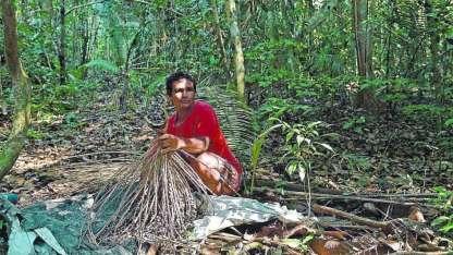 Los indígenas que viven en la Volta do Bucho, en plena Amazonia, viven primitivamente.