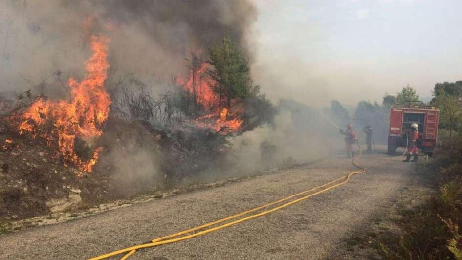 Suben a 31 los muertos en los incendios en Portugal — VENEZUELA