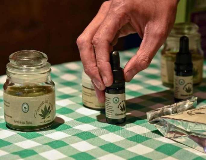 Analizarán en la AN uso medicinal de la Marihuana