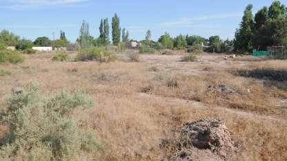 El terreno -que pertenecería a una cooperativa- está en la calle Rawson entre Doctor Moreno y Luján.