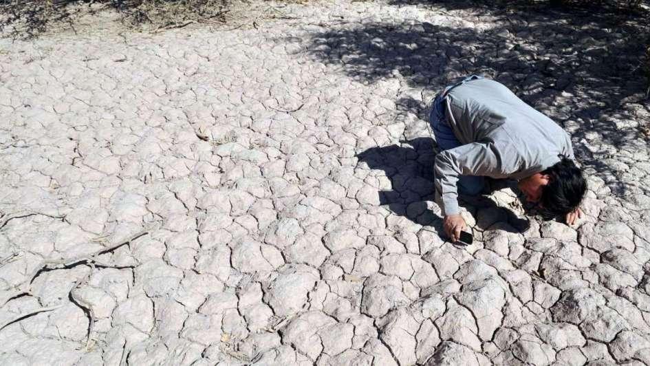 Sequía crónica, una amenaza para la producción agroalimentaria