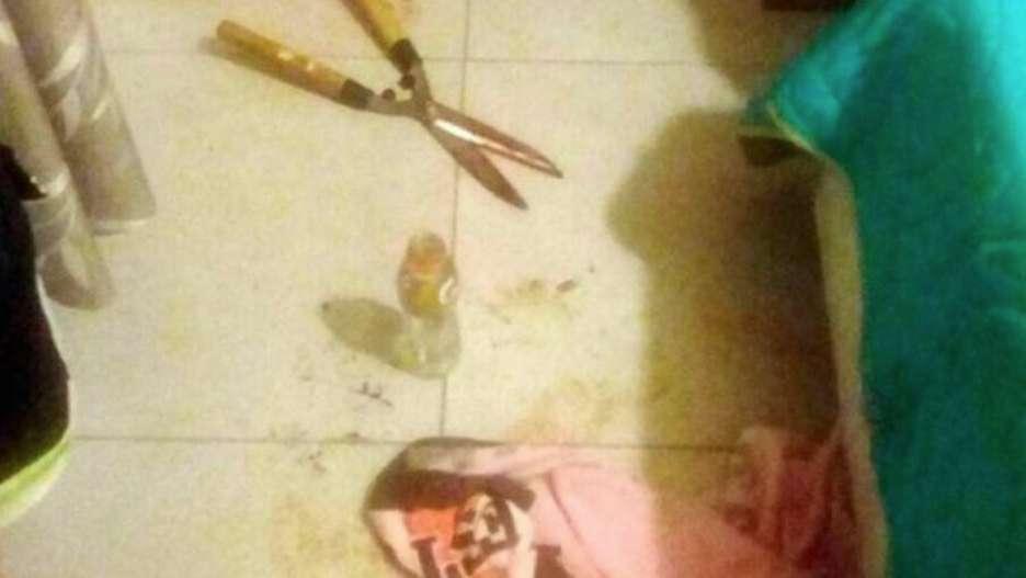¿Qué pasó la noche en que Micaela Barattini cortó los genitales de su pareja con una tijera?