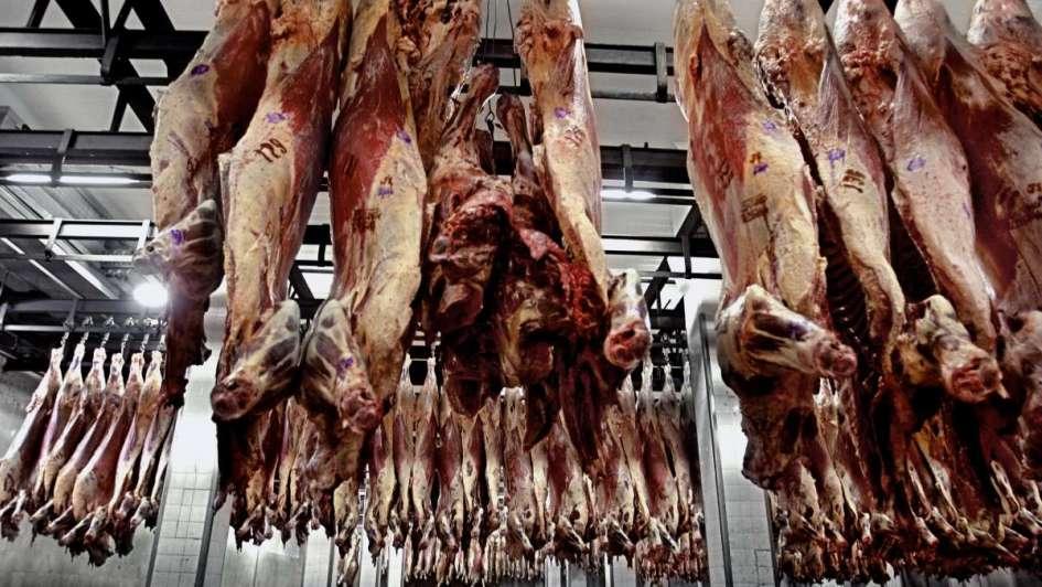 Agroindustria detectó e intimó a 140 operadores de la carne que evadían impuestos