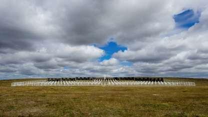 Cementerio Darwin en Malvinas