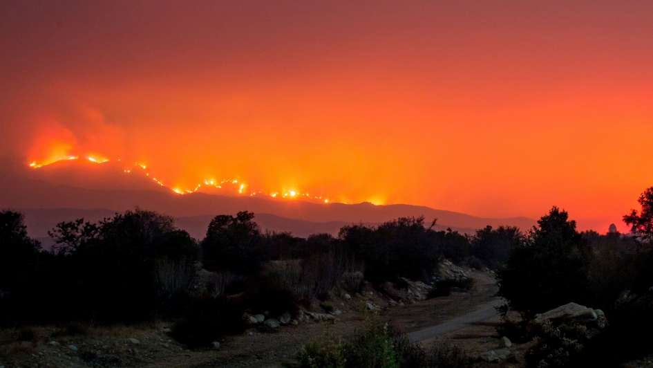 Incendios forestales de California llegan a la exclusiva zona de Bel-Air