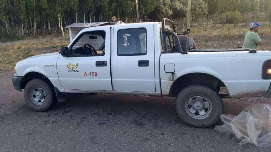 Escándalo en Malargüe: transportaban chivos faenados en una camioneta de Vialidad