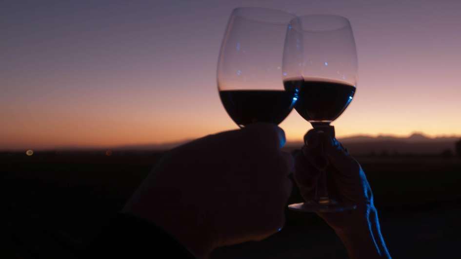 Balance 2017: exportaciones en baja y 8 veces más vino importado