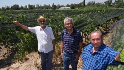 Hugo Villanueva (53), Dante González (70) y Bruno González contaron sus secretos.