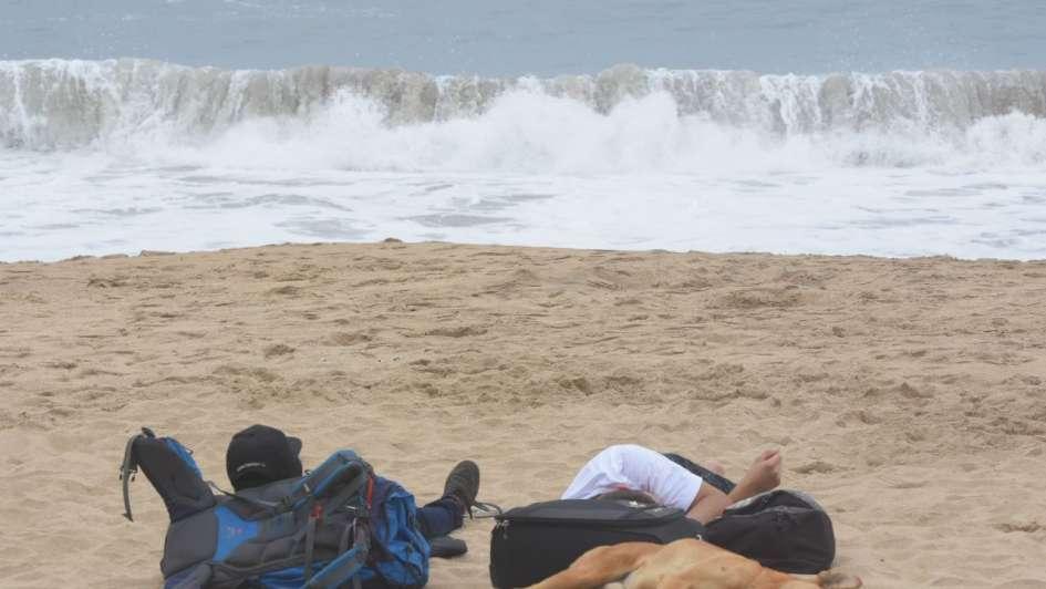 Zapallar: perros prohibidos en la playa