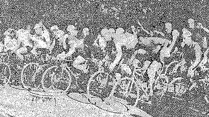 Efemérides 13 de enero de 1952: Bruna ganó la carrera Circuito Juv. Unida