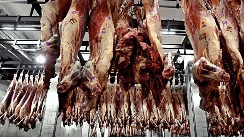 Hacia un nuevo paradigma en el consumo mundial de carne - Por Jorge Castro