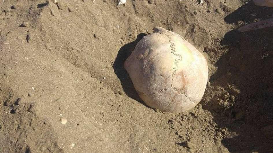 Misterio por la aparición de unos 20 esqueletos humanos en una playa de Chubut