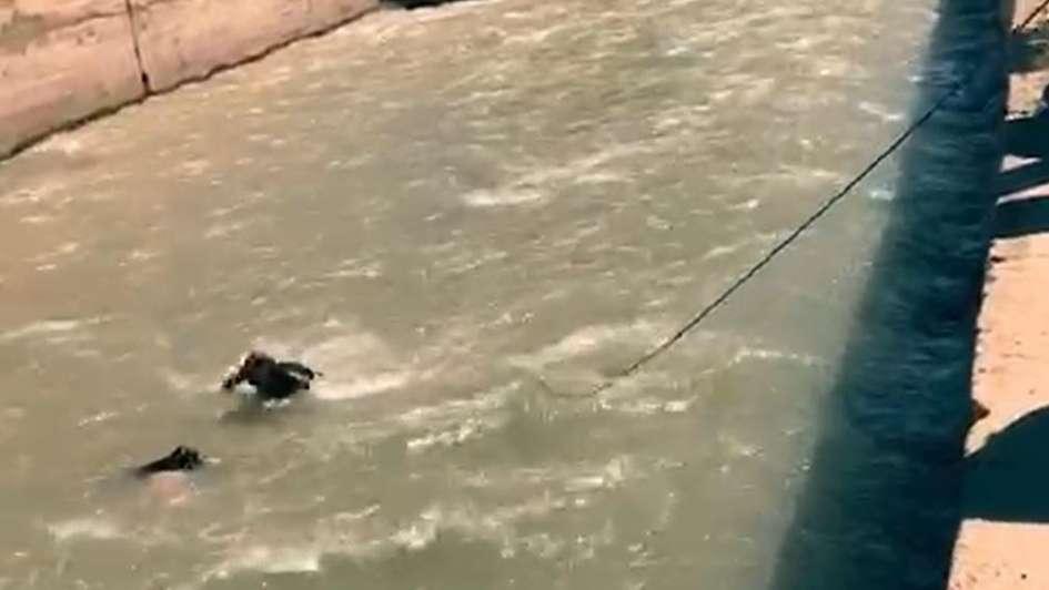 Video: el impresionante rescate de un hombre de las aguas del canal Cacique Guaymallén