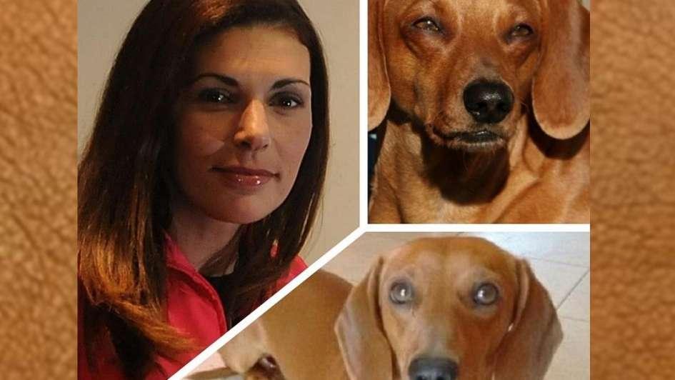 Cecilia Ranua busca angustiada el perro que le robaron