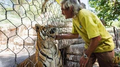 Esteban, el cuidador de las tigresas Lucía y Violeta