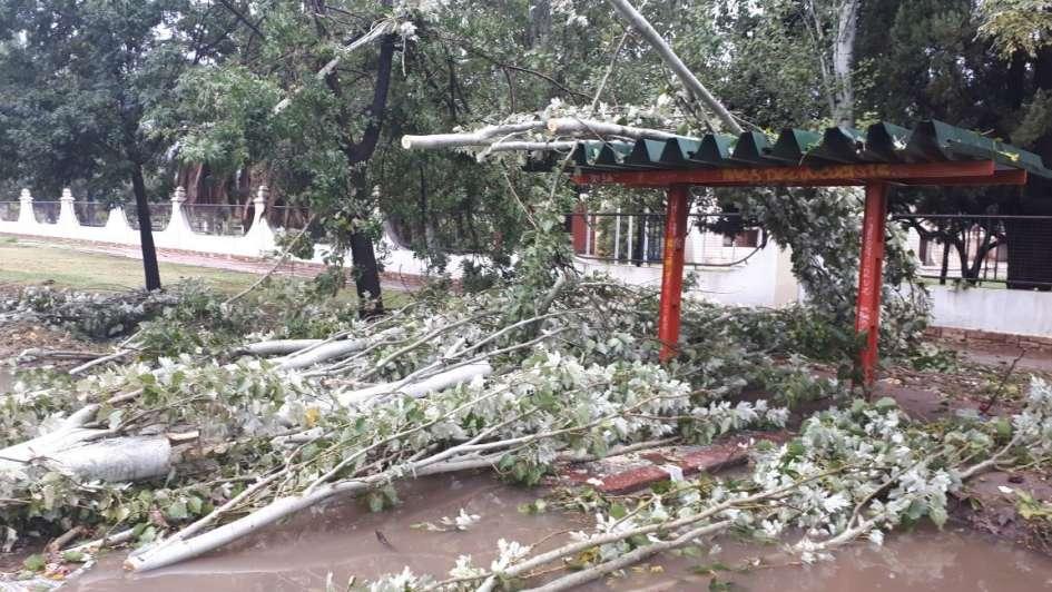 Fuerte tormenta azotó el Gran Mendoza: miles de usuarios sin luz y casas inundadas