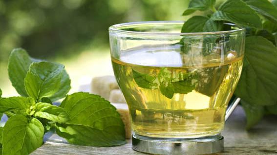 El té: la bebida saludable de moda en la actualidad