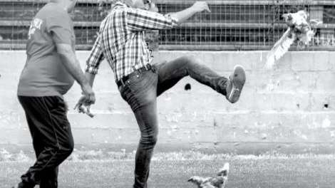Escándalo en el fútbol: hinchas arrojaron dos gallinas y un dirigente las sacó a patadas