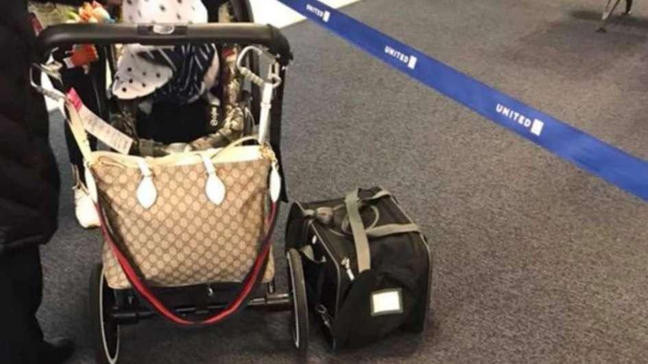 Un perro murió en pleno vuelo porque lo obligaron a ir con el equipaje de mano
